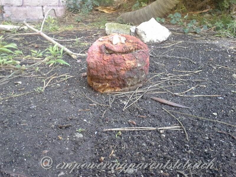 pumpkin B decompostion