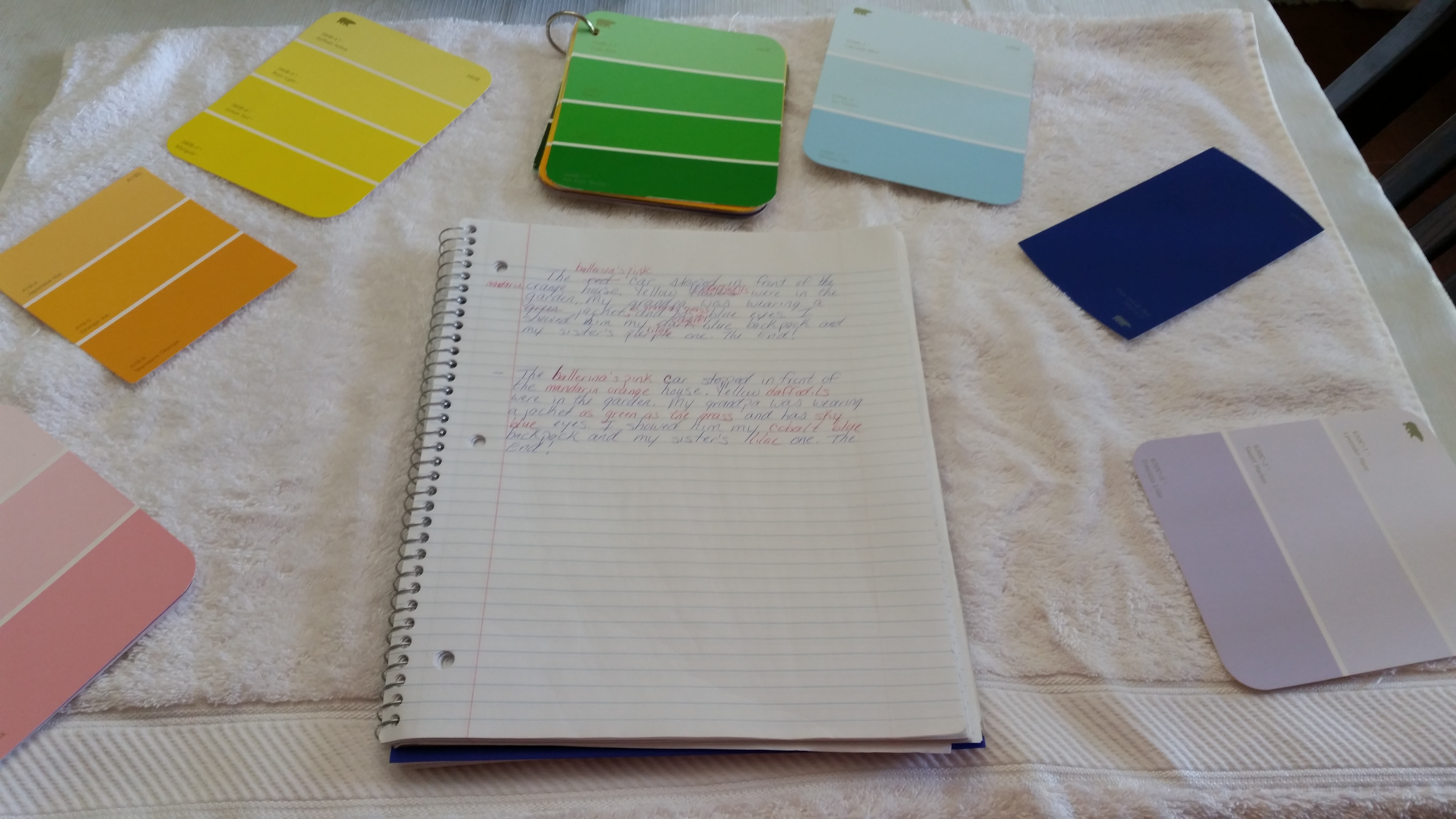 Empowering Parents to Teach- Color notebok
