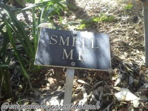 smellme
