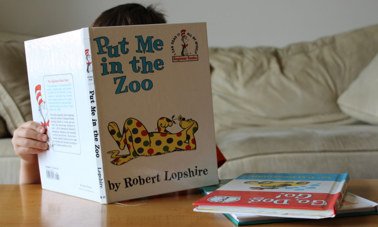 Empowering Parents to Teach- The Three Books That Taught My Kids to Read